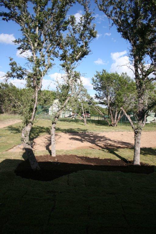 10203 Thomas Lane - backyard