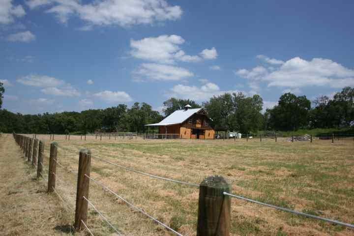Pasture & Barn 1