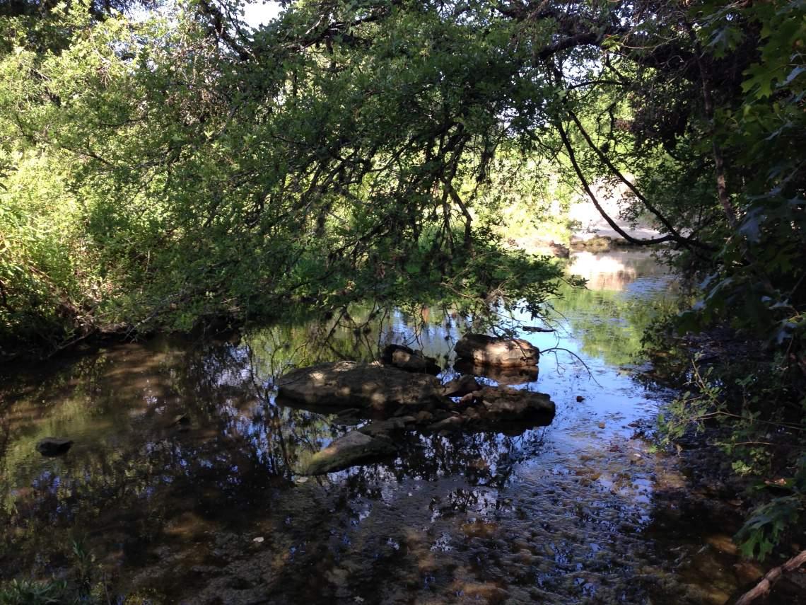 little barton creek 6