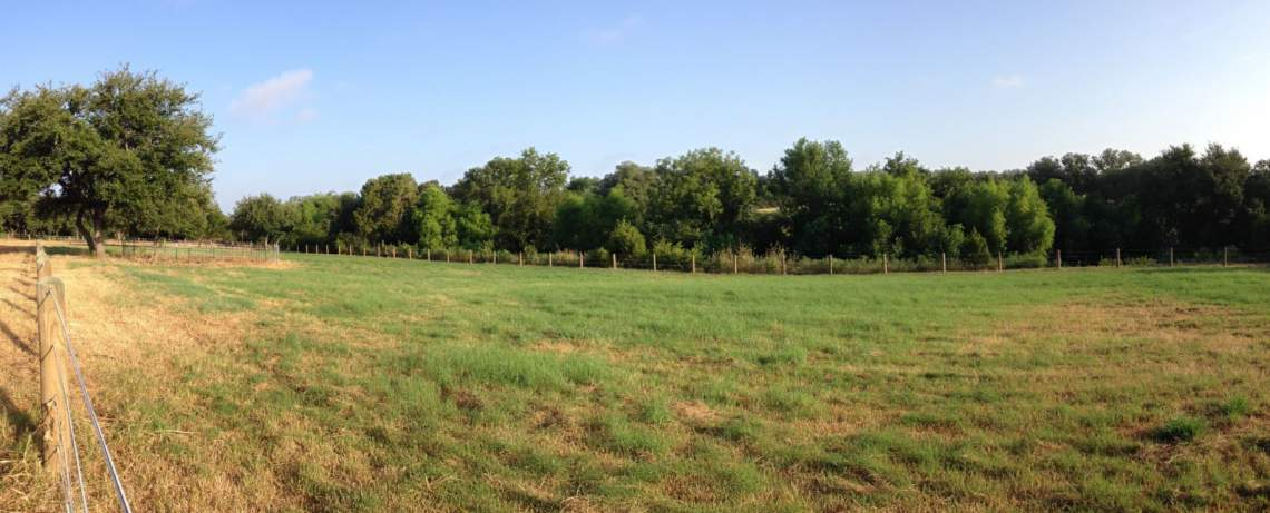 pasture and creek frontage