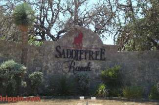 Saddletree Ranch Homes for Sale in Dripping Springs