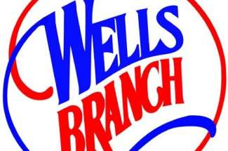 Wells Branch Homes For Sale – Austin Texas